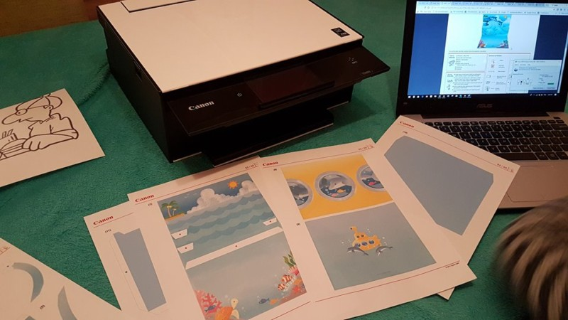 Printer and dolphin